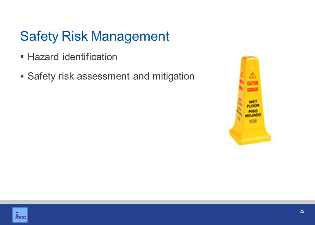 Safety Assurance Safety performance monitoring and measurement