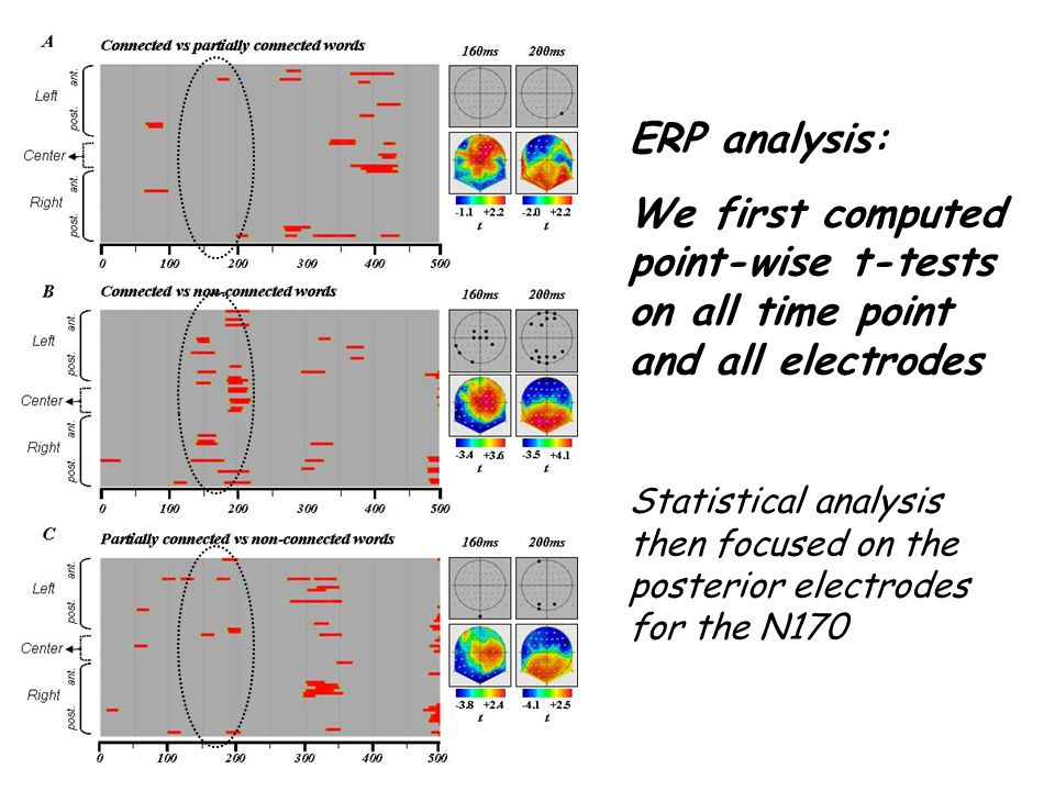 ERP analysis: We first computed point-wise t-tests on all time point and all electrodes.