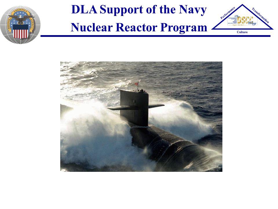 Nuclear Reactor Program
