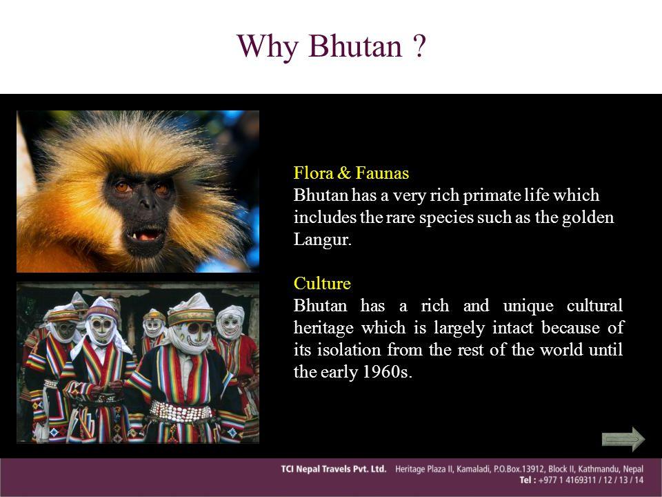 Why Bhutan Flora & Faunas