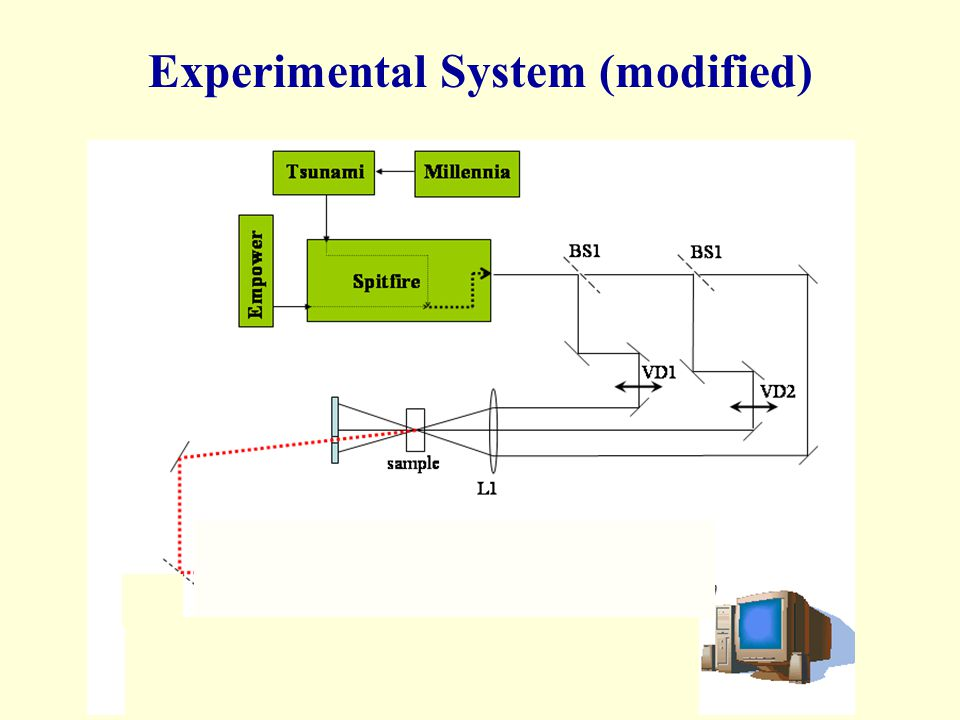 Experimental System (modified)