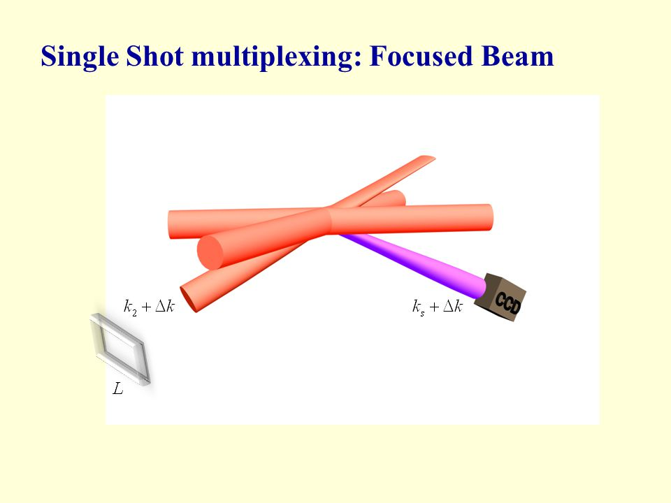 Single Shot multiplexing: Focused Beam