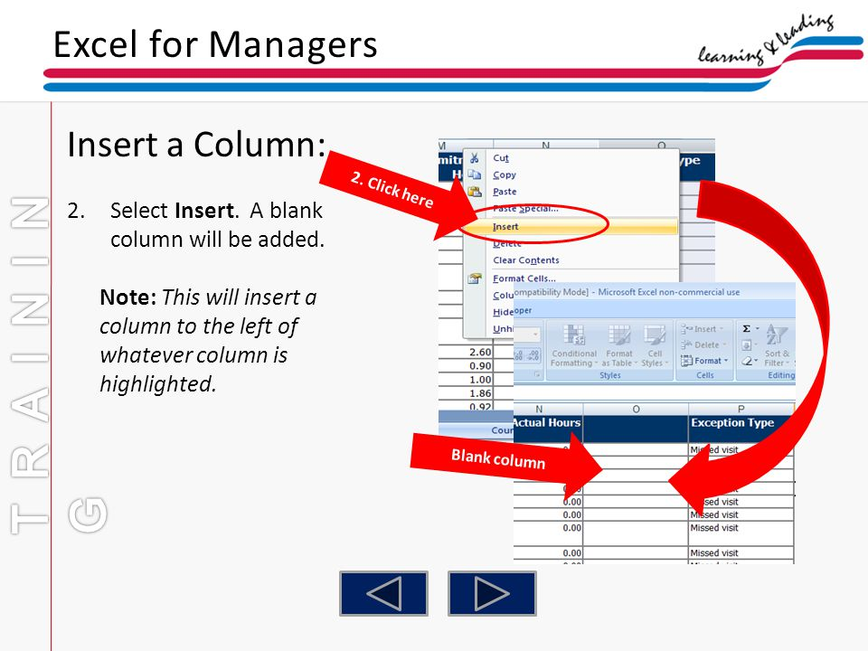 TRAINING Excel for Managers Insert a Column:
