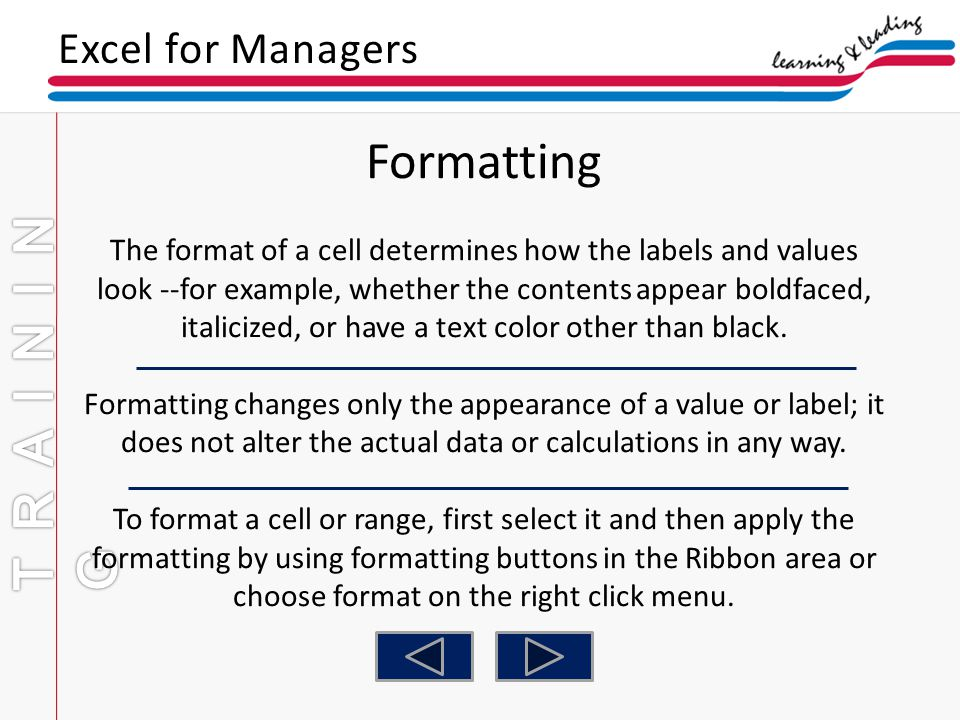 Formatting TRAINING Excel for Managers