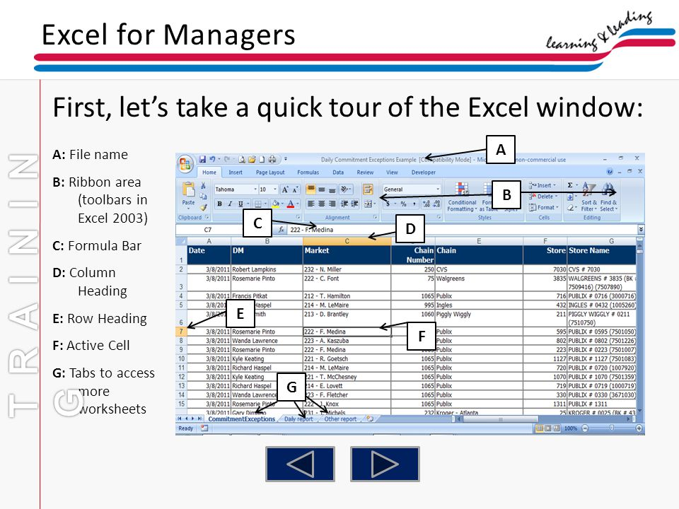 TRAINING Excel for Managers