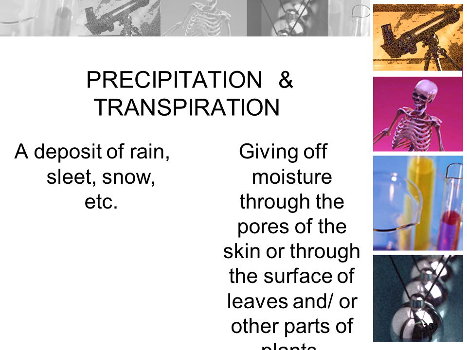 PRECIPITATION & TRANSPIRATION