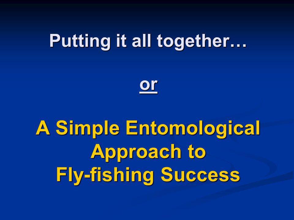 Putting it all together… or A Simple Entomological Approach to Fly-fishing Success