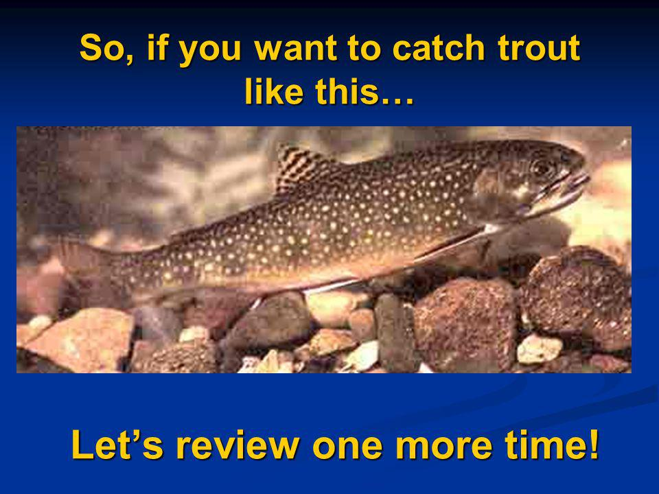 So, if you want to catch trout like this… Let's review one more time!