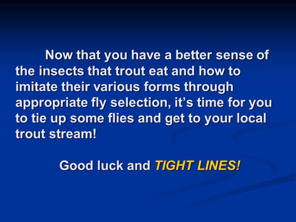 Now that you have a better sense of the insects that trout eat and how to imitate their various forms through appropriate fly selection, it's time for you to tie up some flies and get to your local trout stream.