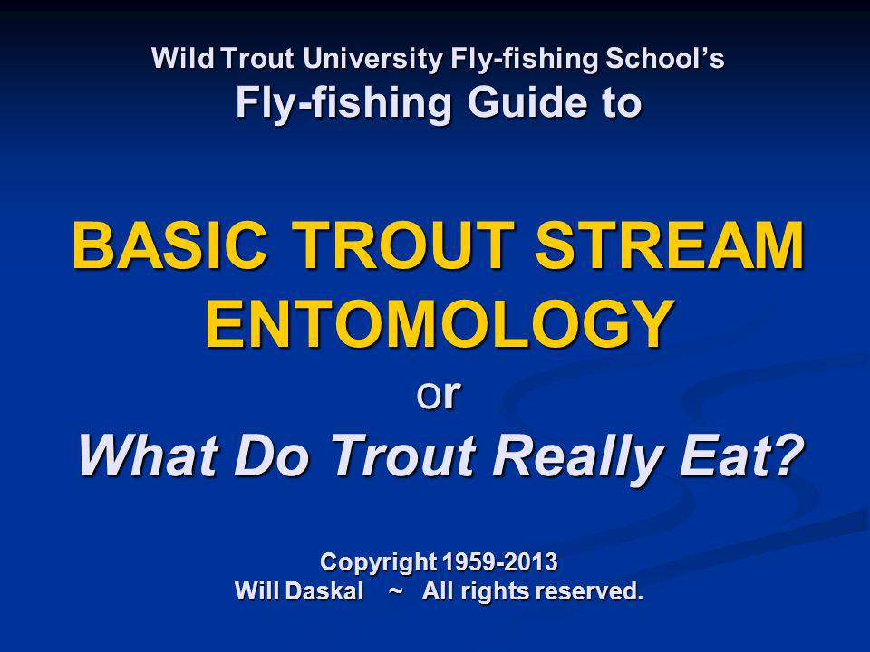 Wild Trout University Fly-fishing School's Fly-fishing Guide to BASIC TROUT STREAM ENTOMOLOGY or What Do Trout Really Eat.