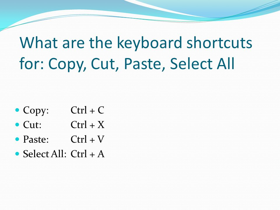 What are the keyboard shortcuts for: Copy, Cut, Paste, Select All
