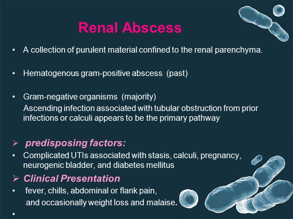 Renal Abscess Clinical Presentation