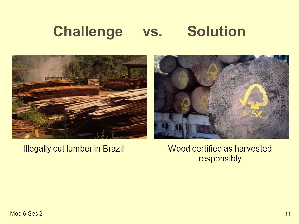 Wood certified as harvested responsibly