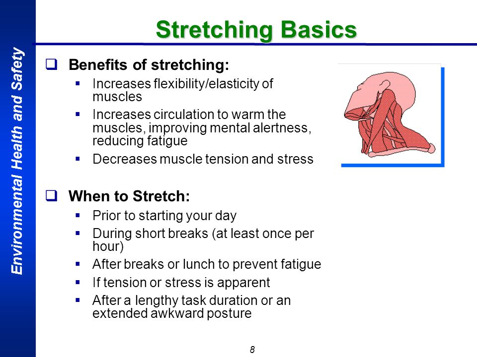Stretching Basics Benefits of stretching: When to Stretch: