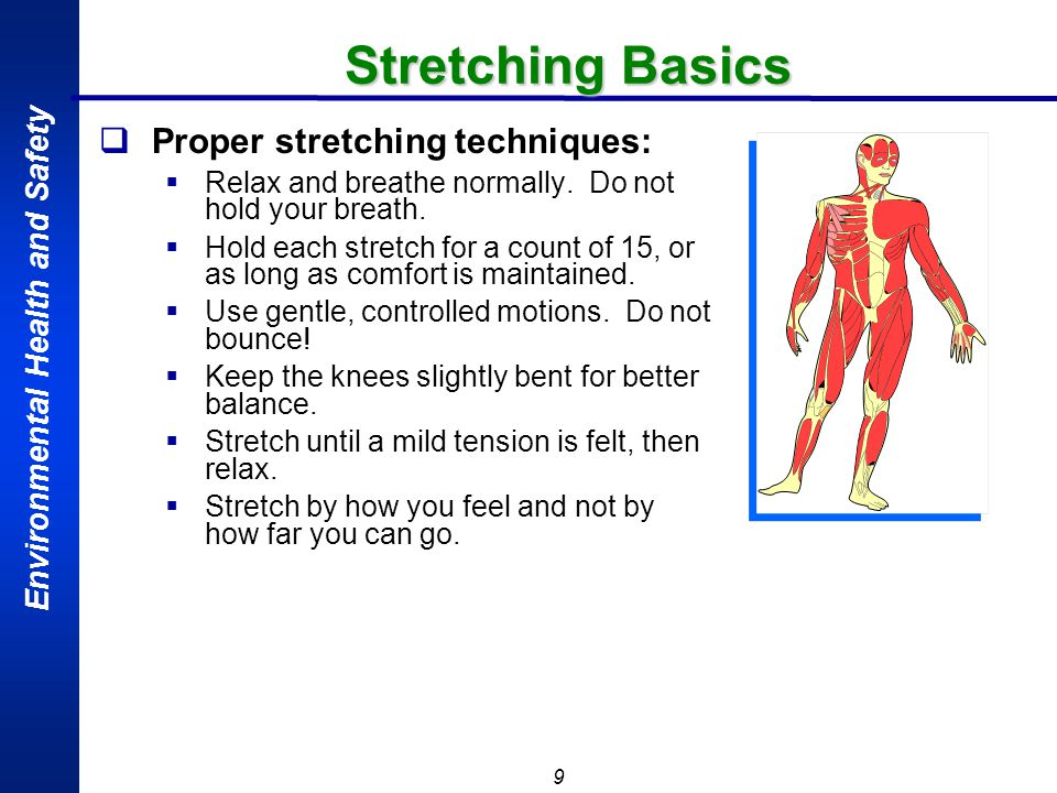 Stretching Basics Proper stretching techniques: