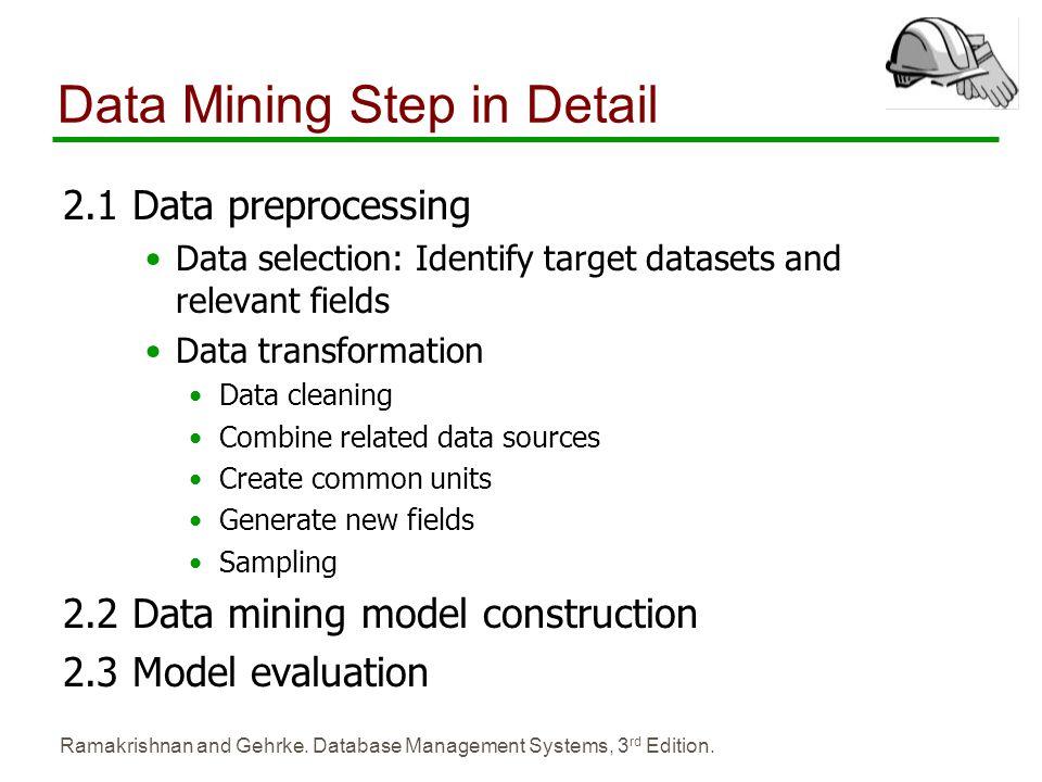 Data Mining Step in Detail