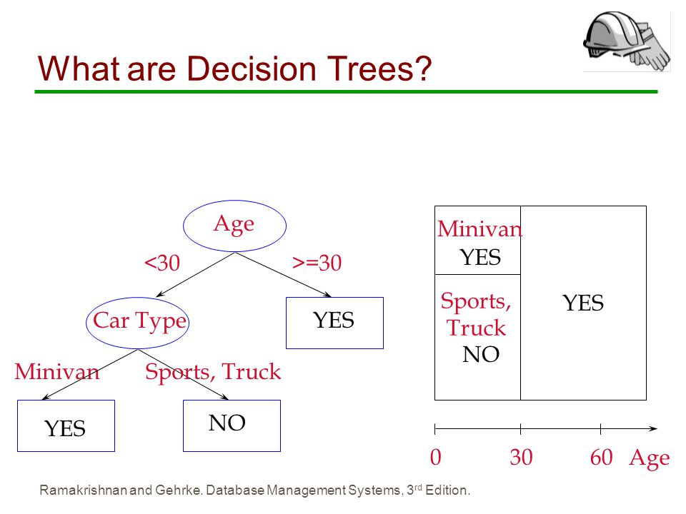 What are Decision Trees
