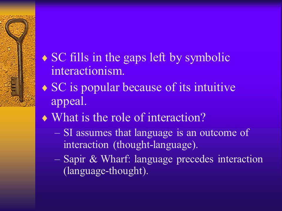 SC fills in the gaps left by symbolic interactionism.