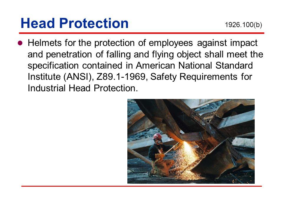 Head Protection 1926.100(b)