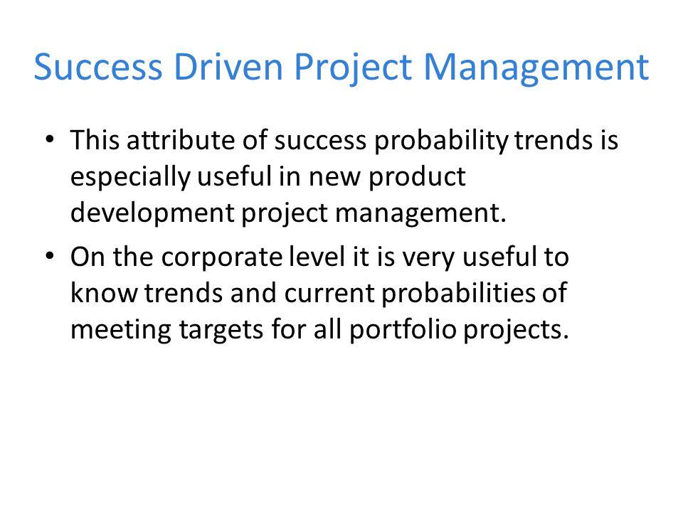 Success Driven Project Management