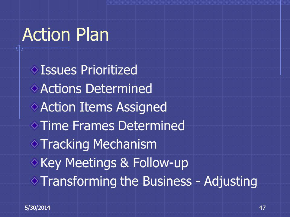 Action Plan Issues Prioritized Actions Determined