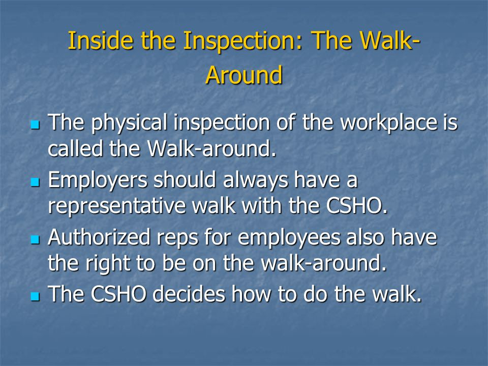 Inside the Inspection: The Walk-Around