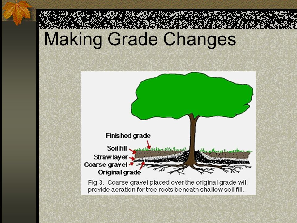 Making Grade Changes Porous fill can also be used if you are making additions of 1-3 inches over the root zone.