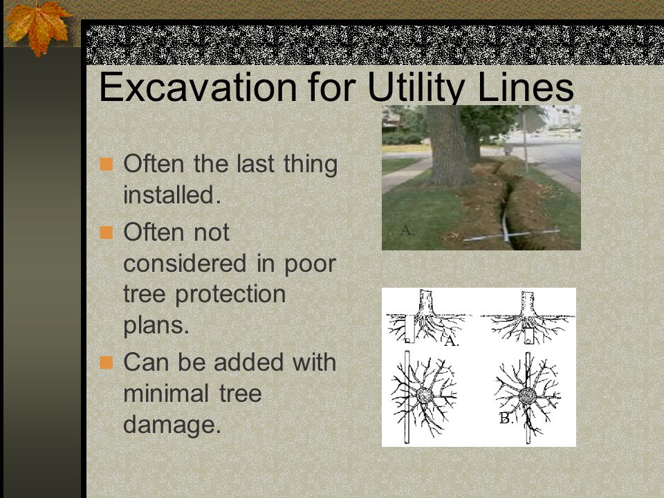 Excavation for Utility Lines