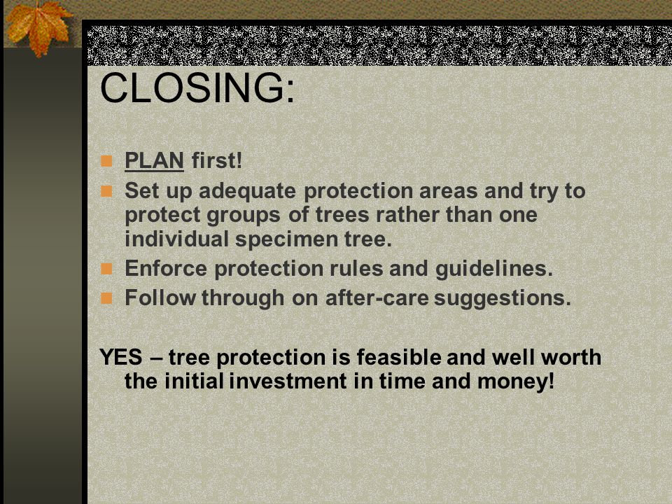 CLOSING: PLAN first! Set up adequate protection areas and try to protect groups of trees rather than one individual specimen tree.