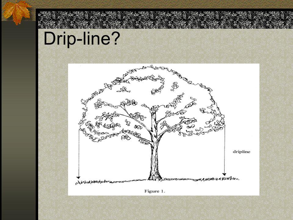 Drip-line