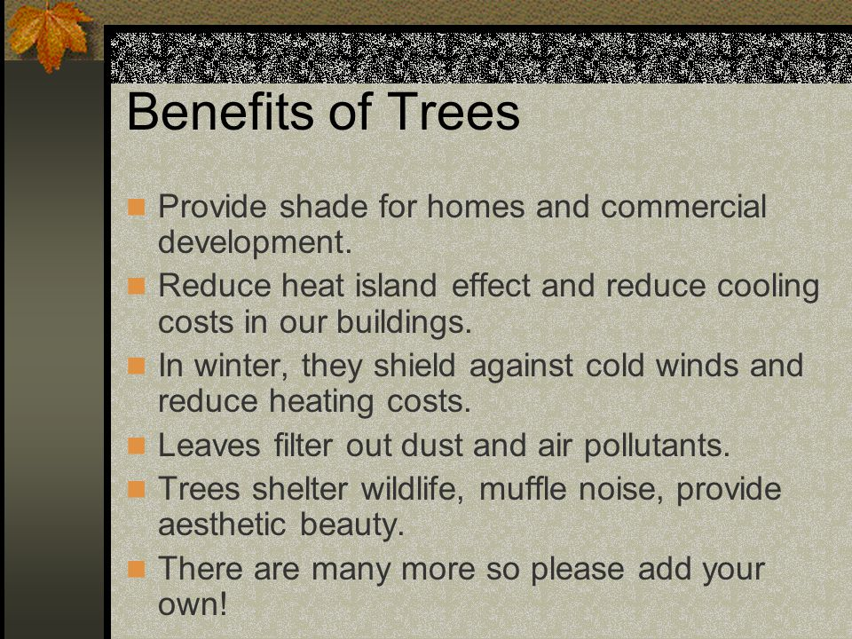 Benefits of Trees Provide shade for homes and commercial development.