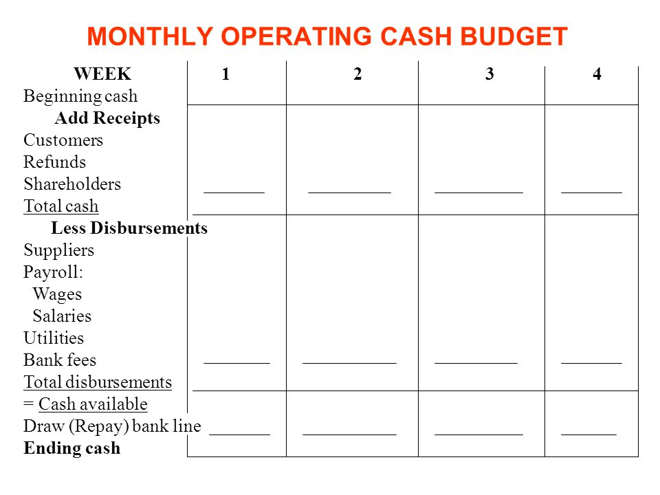 MONTHLY OPERATING CASH BUDGET