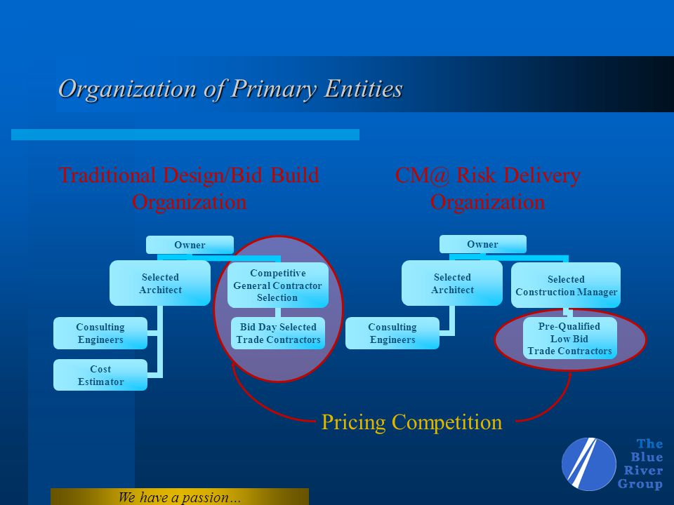 Organization of Primary Entities