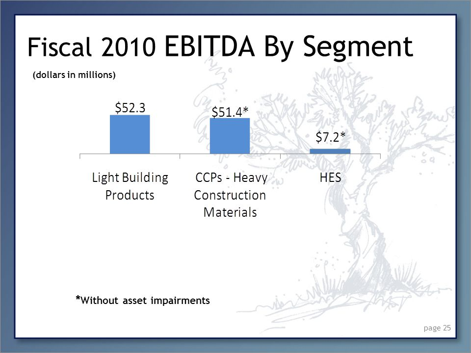 Fiscal 2010 EBITDA By Segment