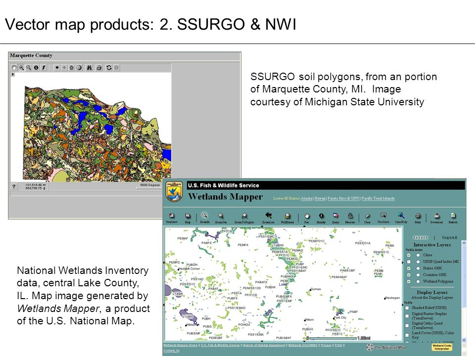 Vector Map Products 2 Ssurgo Nwi
