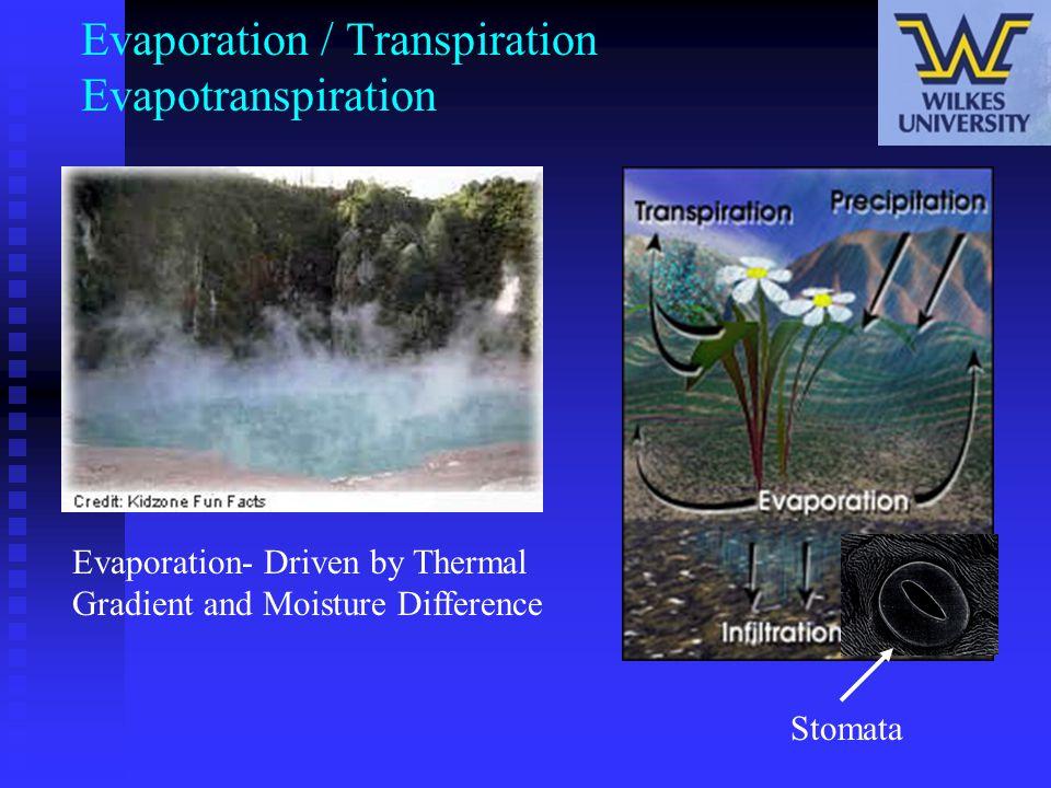 Evaporation / Transpiration Evapotranspiration