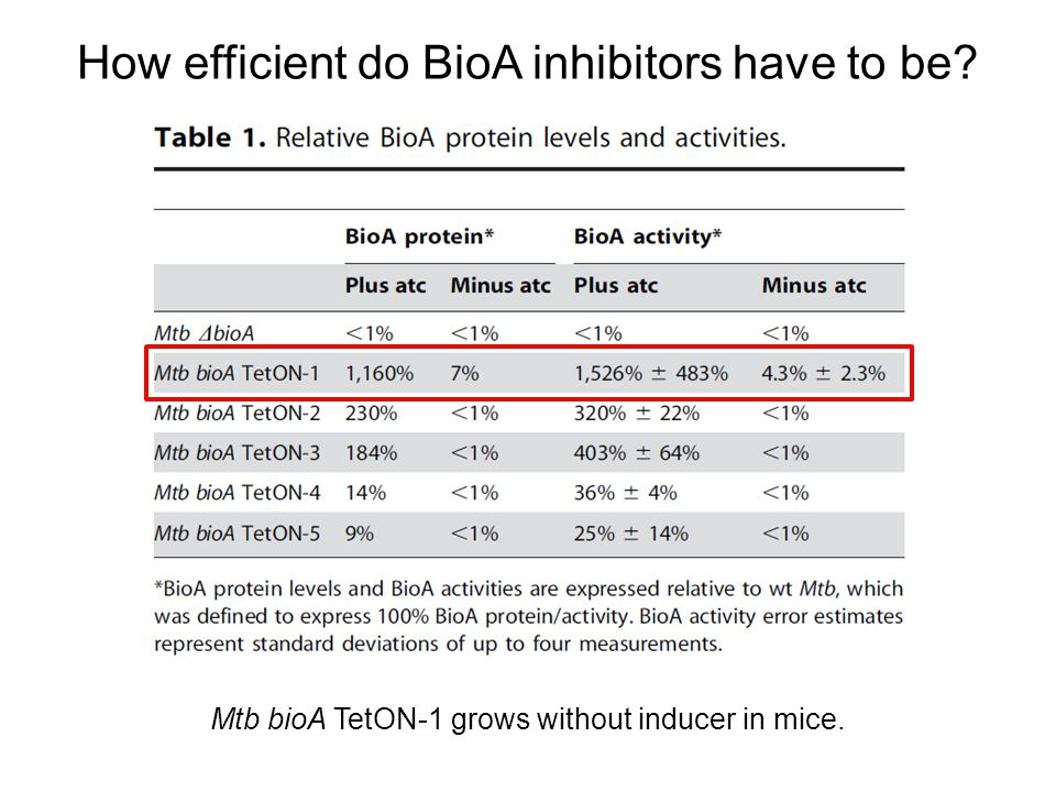 How efficient do BioA inhibitors have to be