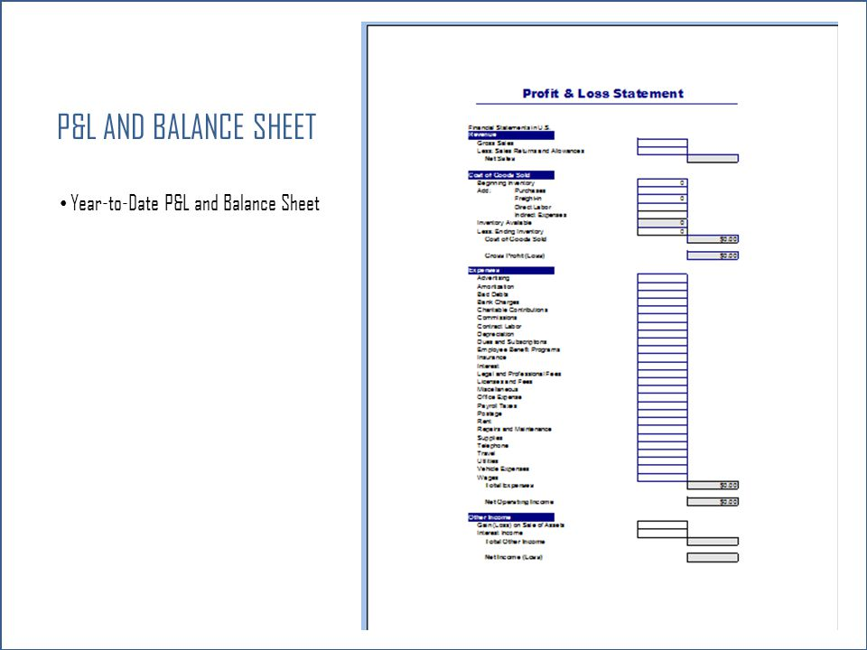 P&L and Balance Sheet Year-to-Date P&L and Balance Sheet