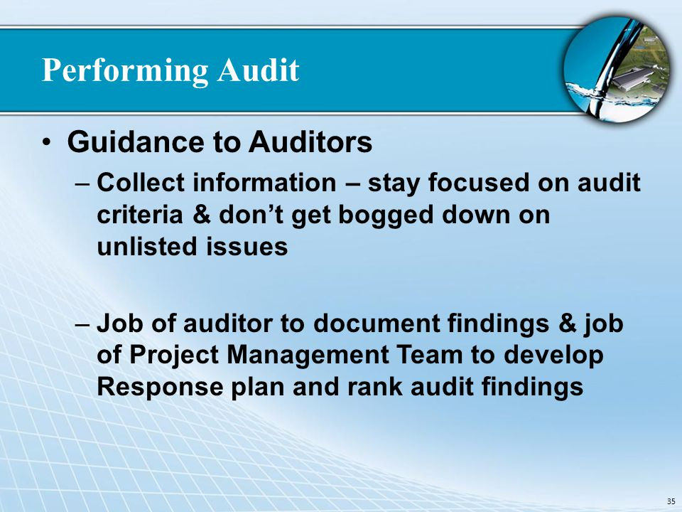 Performing Audit Guidance to Auditors