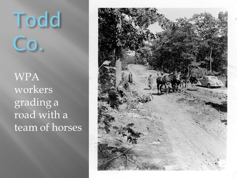 Todd Co. WPA workers grading a road with a team of horses