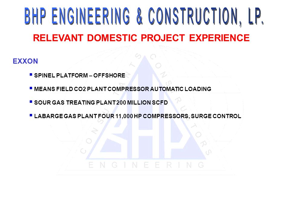 RELEVANT DOMESTIC PROJECT EXPERIENCE