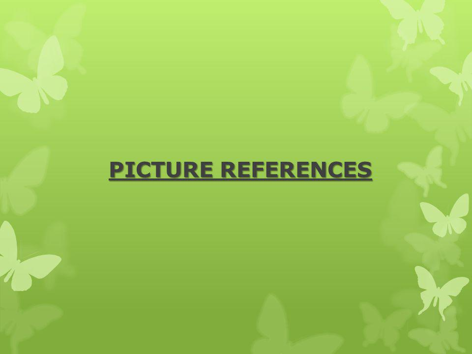 PICTURE REFERENCES Start frm here but take off this ans start with the pixs.