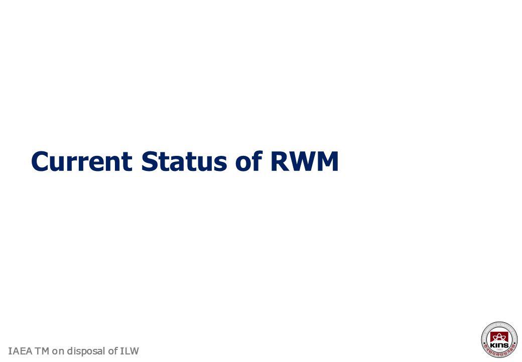 Current Status of RWM