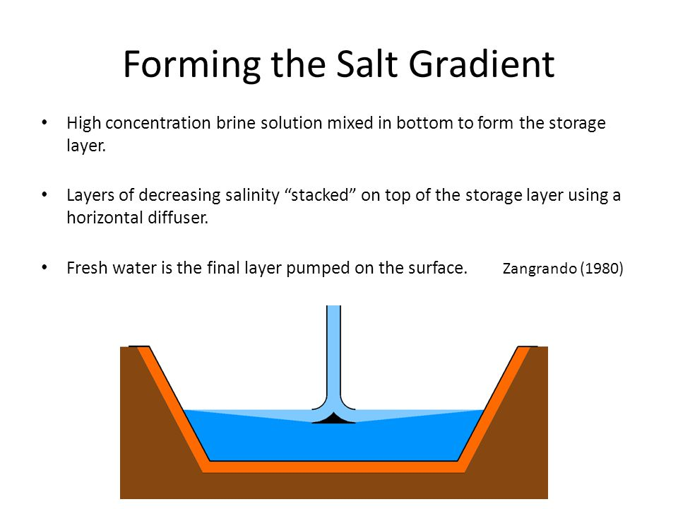Forming the Salt Gradient
