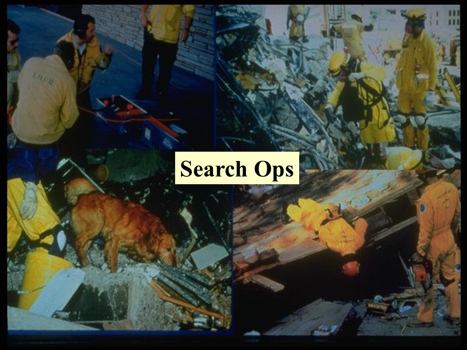 Search Ops