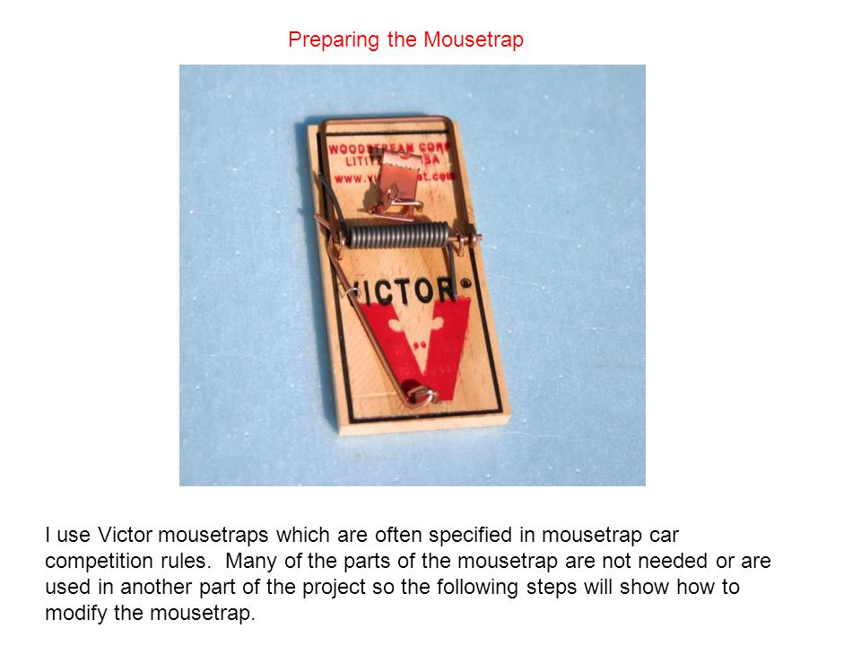 Preparing the Mousetrap