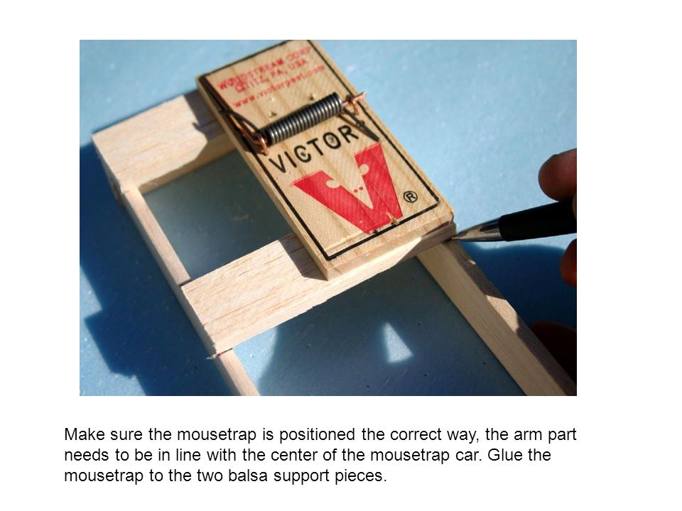 Make sure the mousetrap is positioned the correct way, the arm part needs to be in line with the center of the mousetrap car.