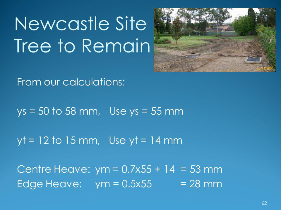 Newcastle Site Tree to Remain