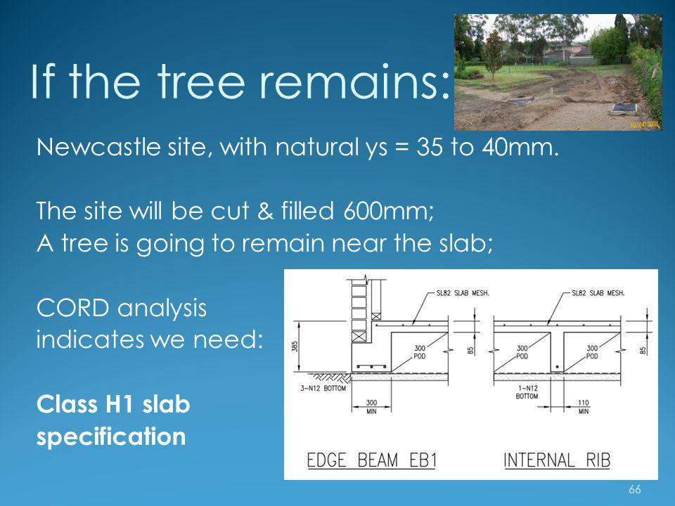 If the tree remains: Newcastle site, with natural ys = 35 to 40mm.