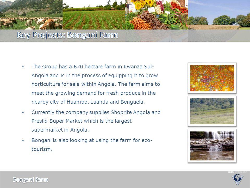 Key Projects: Bongani Farm